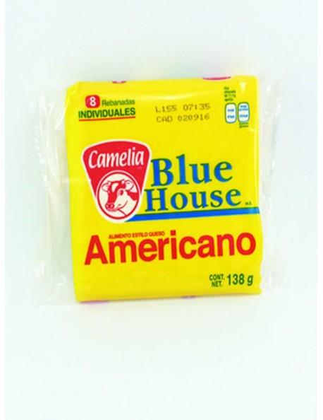 AMARILLO BLUE HOUSE 13 PAQ